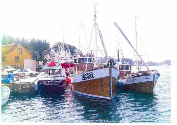 MK Fremad II til kai Brandasund ca år 2000, vårsildfiske, skrog, styrehus , rigg